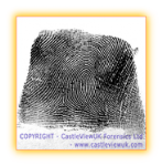 A Right Looped Fingerprint
